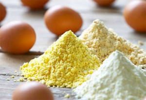 Wholesale egg powder: Egg Yolk Powder and Whole Egg Powder