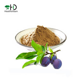 Wholesale prune juice: Prune Juice Powder