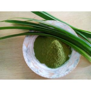 Wholesale korea seaweed: 100% Fresh Pandan Leaf Powder in Bulk/ Organic Product/ From Viet Nam