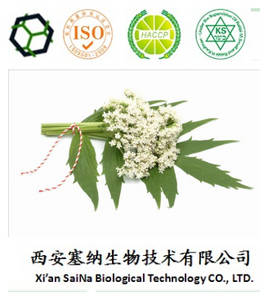 Wholesale antiviral: Manufacturer Supply Valerian Extract