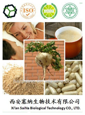 Maca Extract for Herbal Sex Powder Product