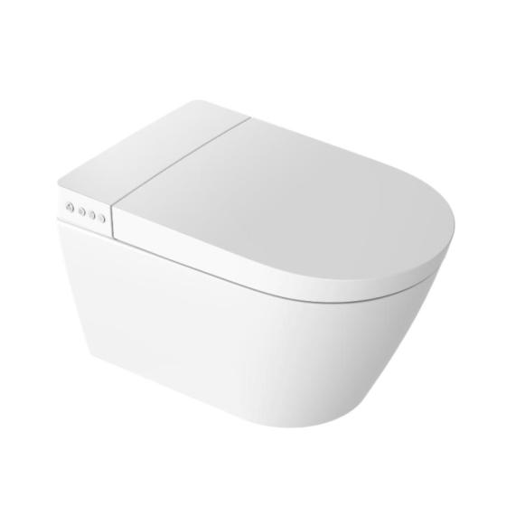 Intelligent Electric Automatic Smart Toilet Seat with Bidet