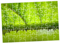 Custom Personalized Puzzle Pieces / Rectangular Puzzles Photo Transfer / Family Game 2