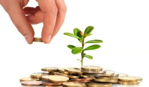 Wholesale business investor: Financial Assistance Worldwide