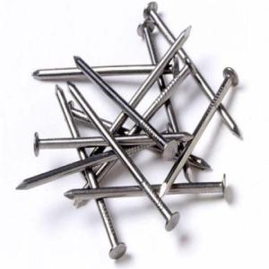Wholesale 90deg bend: Anping Manufacturer Hot Sale Common Nail