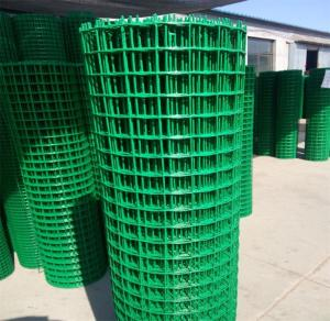Wholesale Steel Wire Mesh: Welded Wire Mesh with Good Price