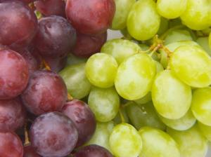 Wholesale grape: Red and White Grapes  for   Sale