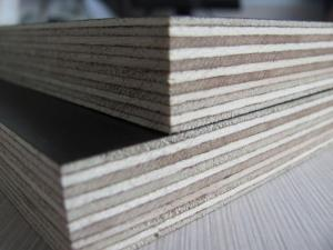 Wholesale films: Film Faced Plywood  for   Sale