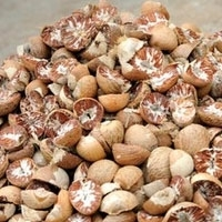 Wholesale betel: Betel Nuts  for  Export