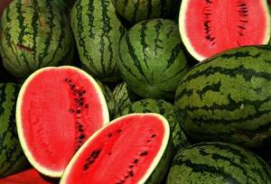Wholesale watermelon: Fresh Sweet Watermelons From South Africa