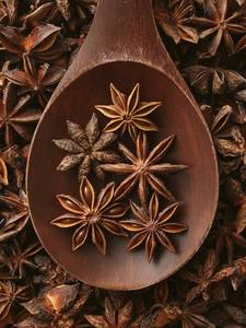 Wholesale anise seed: Dried Star Anise/Dried Spices - Best Prices