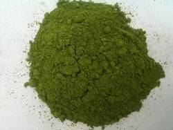 Wholesale botanical powders: Papaya Leaf Extract Powder