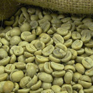 Wholesale coffee beans: Robusta Coffee Beans - Best Quality and Price - FREE SAMPLES