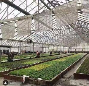 Wholesale Agriculture Projects: Aquaponic System for Fish and Vegetabel