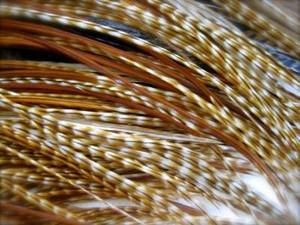 Wholesale grizzly rooster feather: Rooster Grizzly Dyed Brown Feathers for Hair