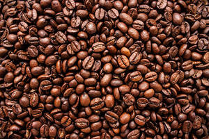 Wholesale coffe beans: Coffee Beans