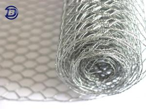 Wholesale isolation coat: Hexagonal Wire Netting