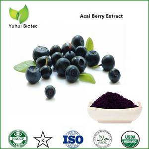 Wholesale acai berry: Acai Berry Extract
