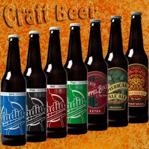 Wholesale sour cherry: Portuguese Craft Beer
