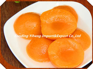 Wholesale apricot dices: Canned Apricot in Syrup