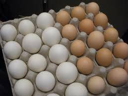 table: Sell FRESH POULTRY BROWN AND WHITE TABLE EGGS