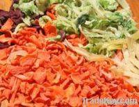 Sell Dehydrated Vegetables
