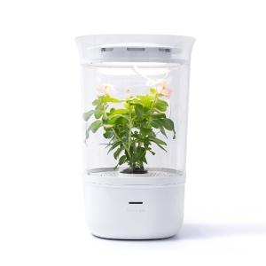 Wholesale air wind fan: Bloomengine (Smart Indoor Plantrer)
