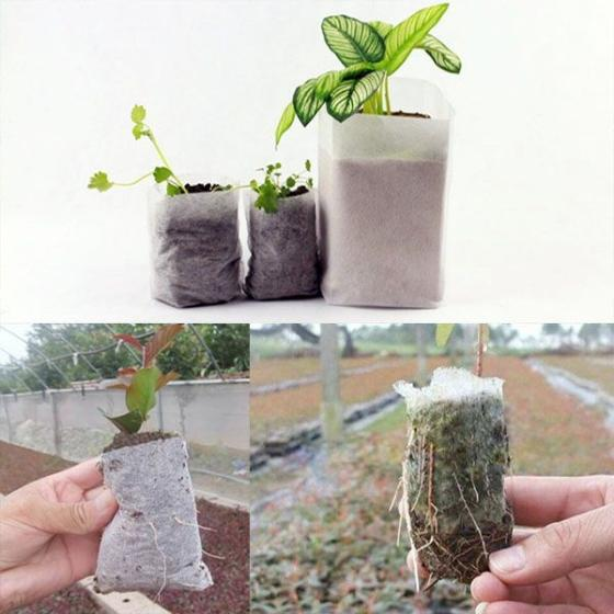 Sell China supplier Breathable 100% PP nonwoven fabric plant nursery bag