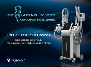 Wholesale fat analyzer: Cryolipolysis Cellulite Machine for Beauty Clinic & Spa