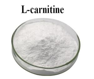 Wholesale l carnitine: L-Carnitine Base 50% Feed Grade Good Quality Competitive Price CAS 541-15-1