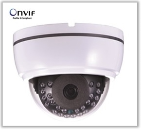 Wholesale privacy filter: CCTV IP Camera [Model No. IP-VD224FIR]