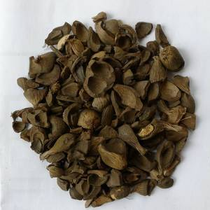 Wholesale Agricultural Waste: Palm Kernel Shell
