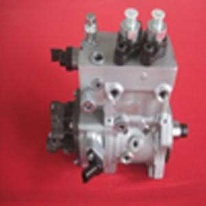 Wholesale Auto Engine: Common Rail Pump