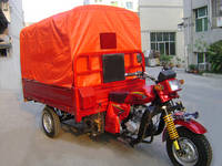 Three Wheel Cargo Motorcycle/Cargo Tricycle 250ZH-3