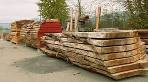 Wholesale Timber: Timber Log Wood for Sale At Very Moderate Prices