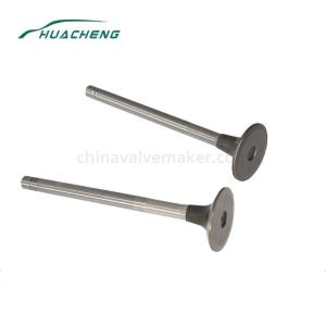 Wholesale auto parts: Auto Spare Parts Engine Valve for HOWO ZQ Eur III