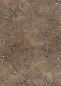Wholesale brown marble: Gray Egyptian Marble - Mil Brown Marble Tiles and Slabs
