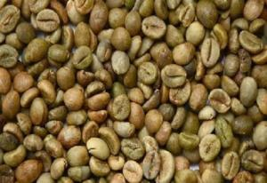 Wholesale coffee beans grade 1: Washed Arabica Green Coffee Beans Grade / Unwashed Arabica Green Coffee Beans Grade
