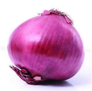 Wholesale wholesale fresh onion: Wholesale Fresh Onion/ White Onion/ Red Onion/ Yellow Onion