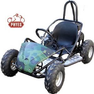 Wholesale Go Karts: New Model Off Road 48V 800W Electric Go Kart for Kids or Adult