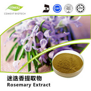 Wholesale mice repeller: Rosmarinic Acid 2.5%~98% Rosemary Leaf Extract