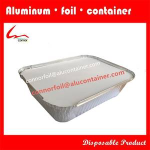 Wholesale disposable container: Disposable Food Container Takeaway Aluminium Foil Health