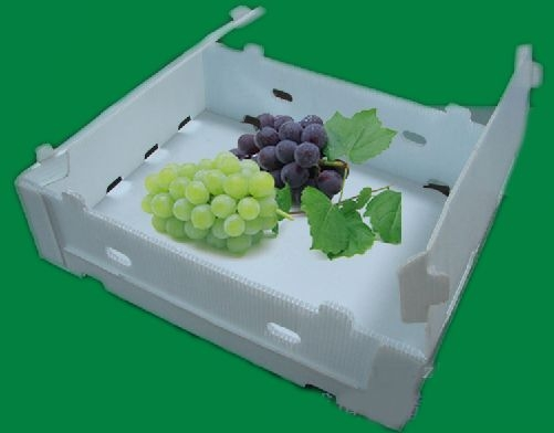 Corflute Fruit and Vegetable Plastic Package Box