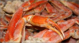 Wholesale fresh live mud crabs: Frozen Snow Crab Legs, Fresh Snow Crab Legs