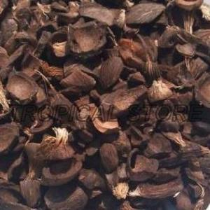 Wholesale palm kernel shell: Palm Kernel Shell