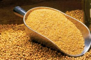 Wholesale Soybean Meal: Soybean Meal / Soya Bean Meal