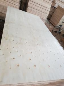Wholesale Construction Materials Processing: The Best Plywood Grade BC for Packing, Size 4'X8'
