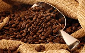 Wholesale Coffee: Arabica Coffee Beans Competitive Price