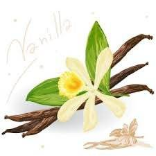 Wholesale ethyl vanillin: Natural Flavouring Vanilla Extract Powder