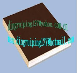 Sell film faced plywood from xuzhou tianxing wood